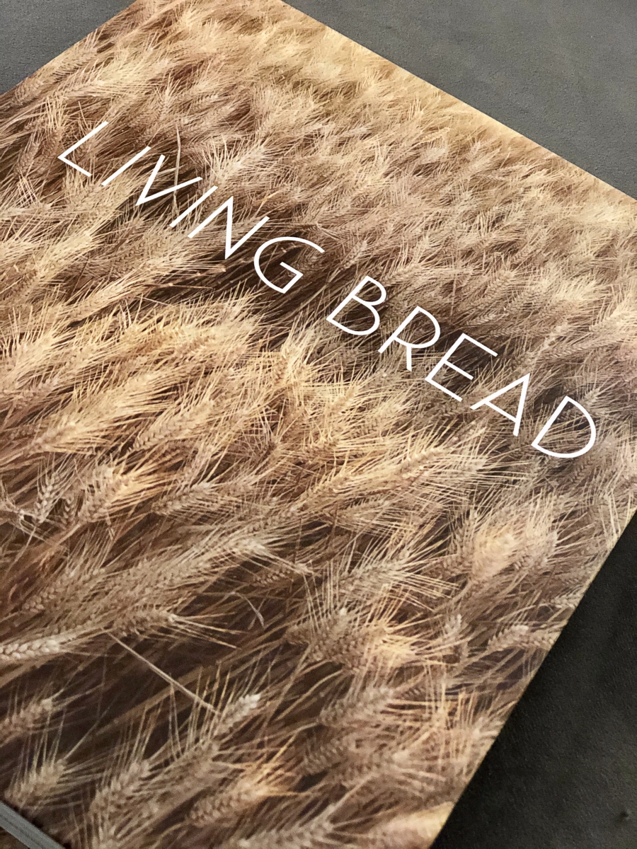 Living Bread – A Cookbook Review featured image